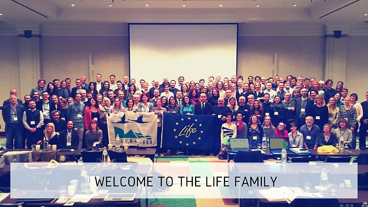 Welcome to Life Family - again